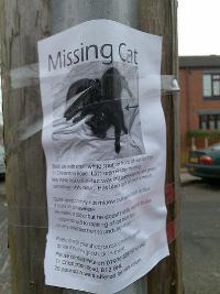 didier_missing